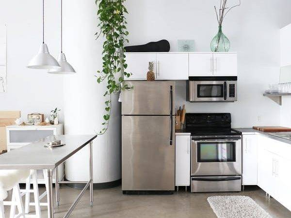 Advice Which Fridge Buy Apartment Therapy