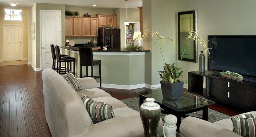 Airy Living Rooms Open Kitchen Designs