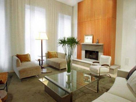 Apartment Contemporary Small Living Room Ideas