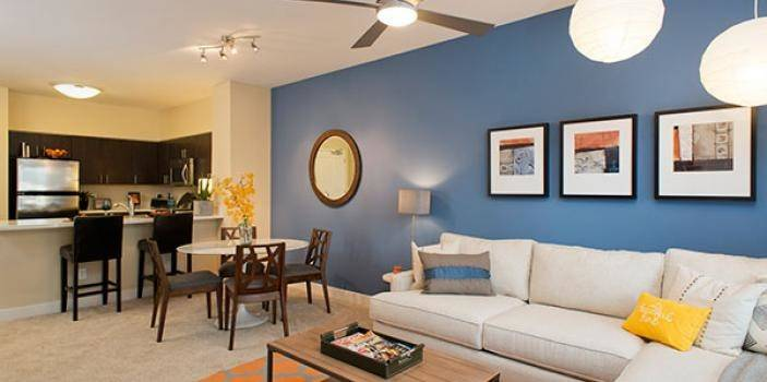 Apartment Decorating Easily Add Color Essex