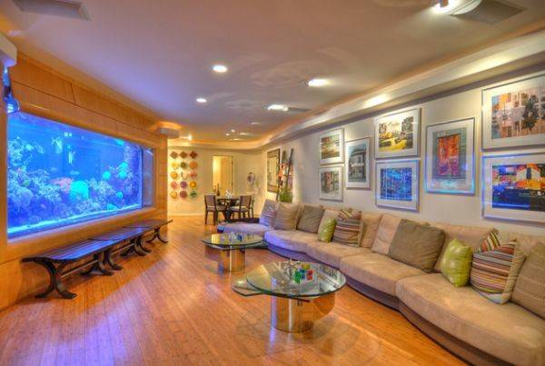 Aquariums Forever Beautiful Decoration Any Type