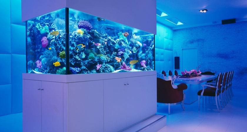 Awesome Aquariums Wish Owned