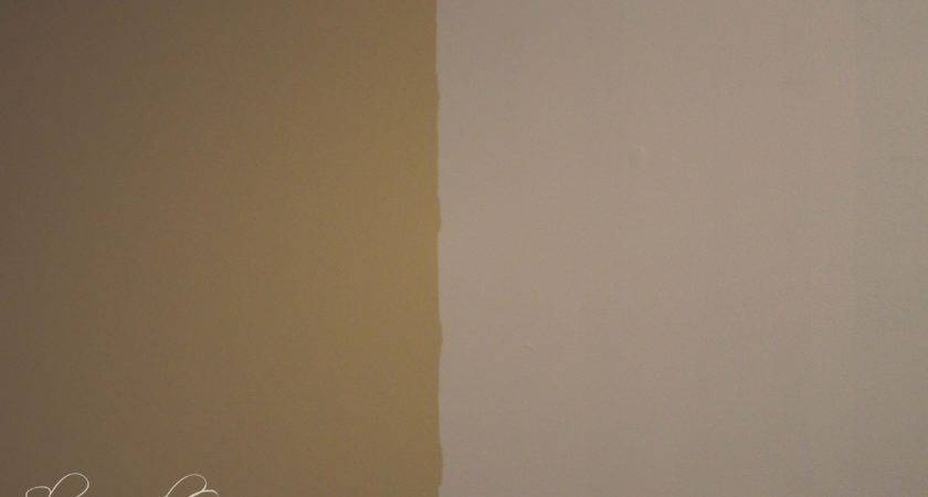 Awesome Light Tan Paint Colors Brown Gray