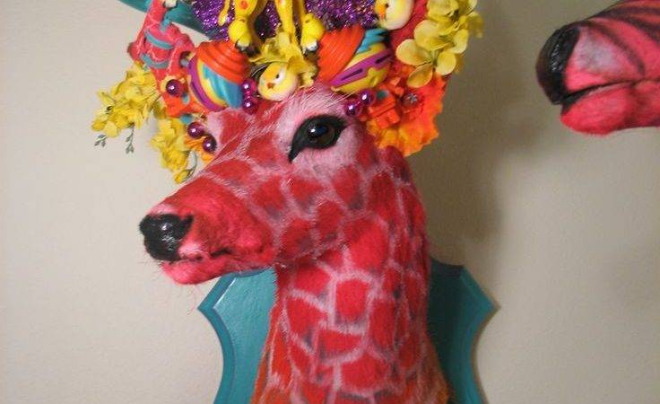Best Deer Heads Ideas Pinterest Head