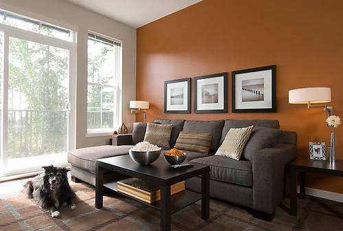 Best Nice Living Room Colors Ideas Home Design