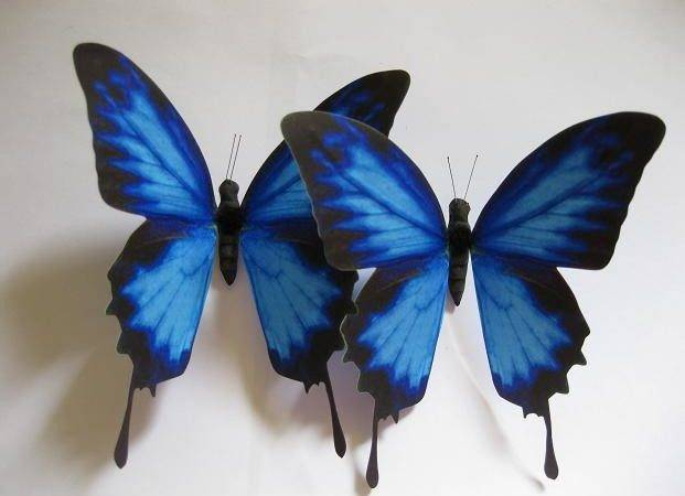 Blue Butterfly Wedding Decoration Cake Topper