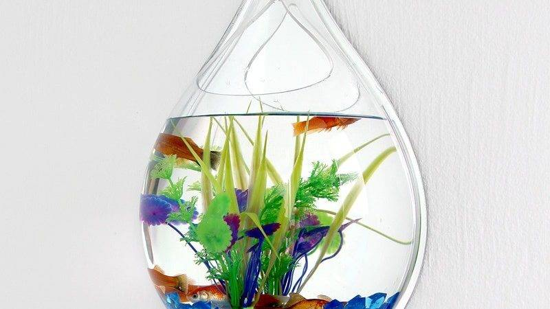 Buy Wholesale Hanging Fish Aquarium China