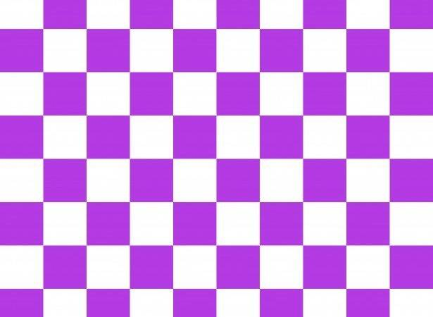 Checkerboard Squares Purple White