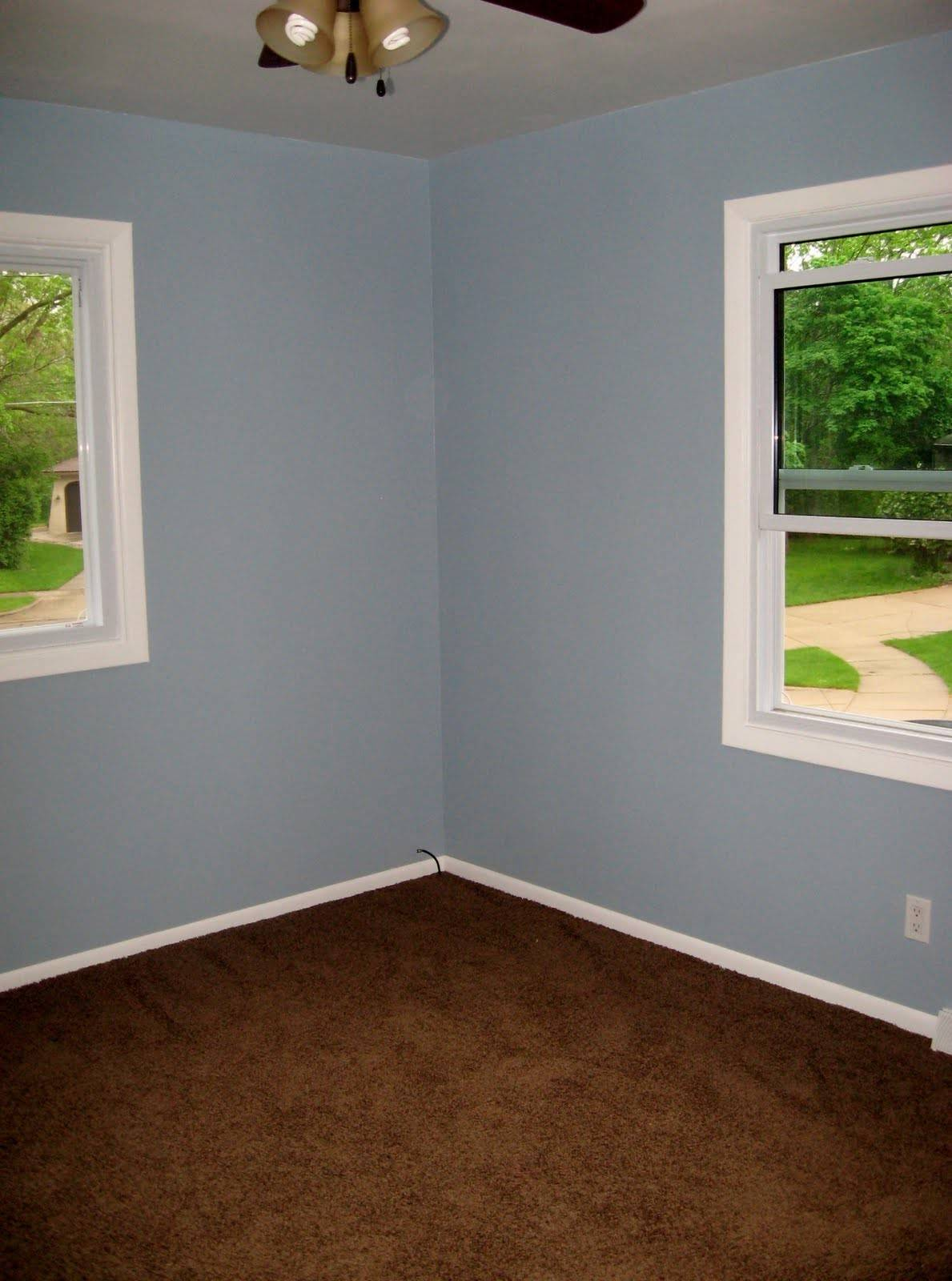 Image of: Color Carpet Goes Light Blue Walls Little Big Adventure