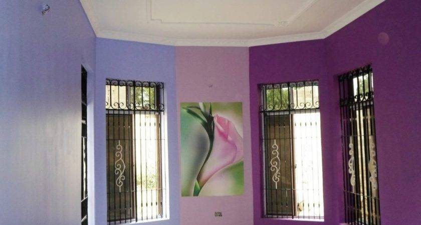 Color Combination Wall Hall Room Paint Colors