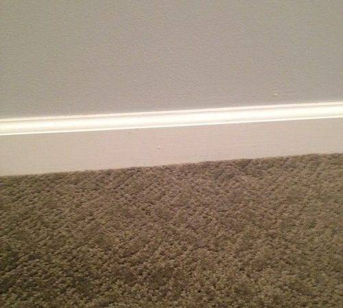 Color Dilemma Greenish Gray Carpet