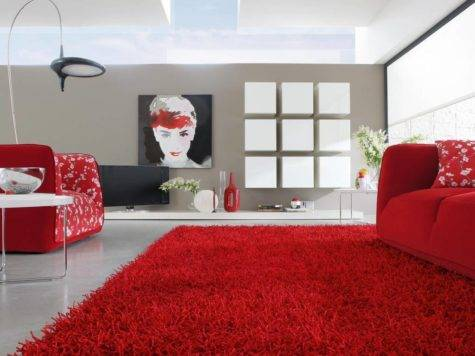 Contemporary Rugs Your Living Room