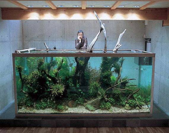 Cool Home Accessories Fish Tank Decorations