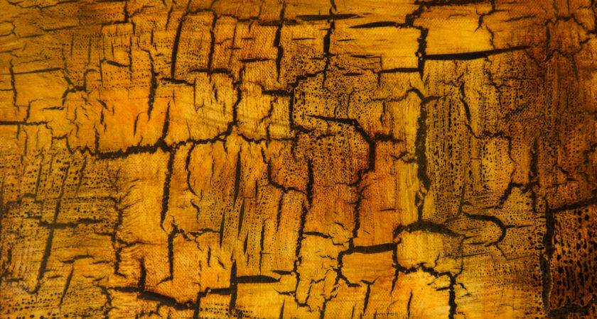 Cracked Grunge Texture Yellow Gold Paint Chip Wall Stained
