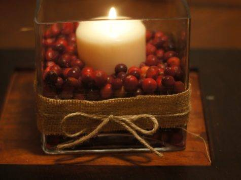 Cranberry Centerpiece Perfect Thanksgiving Christmas