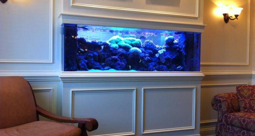 Cuisine Beautiful Home Aquarium Design Ideas