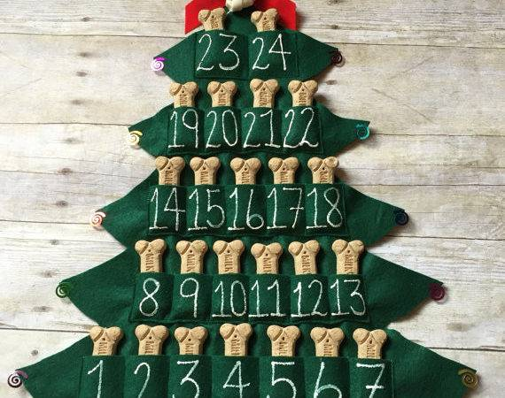 Cute Advent Calendar Ideas Your Dog