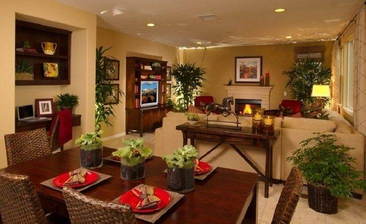 Decorate Living Room Dining Combined