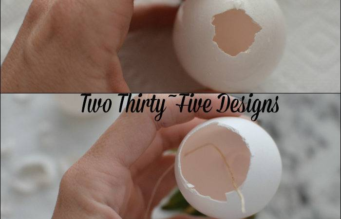Diy Dipped Egg Shell Succulent Wall Garden Two Thirty