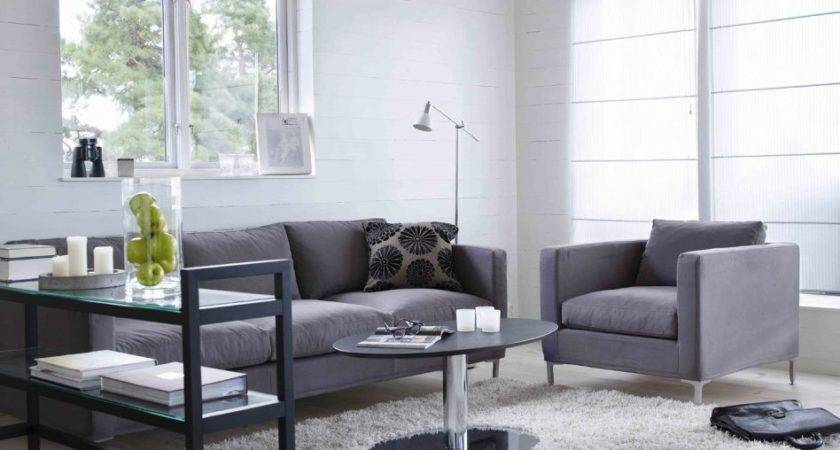 Furniture Good Accent Wall Colors Living Room Small