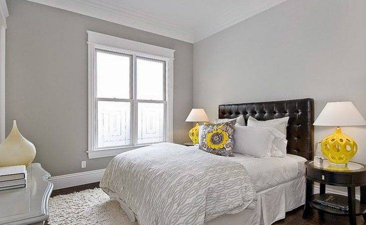 Gorgeous Painting Bedroom Walls Photographs Homes
