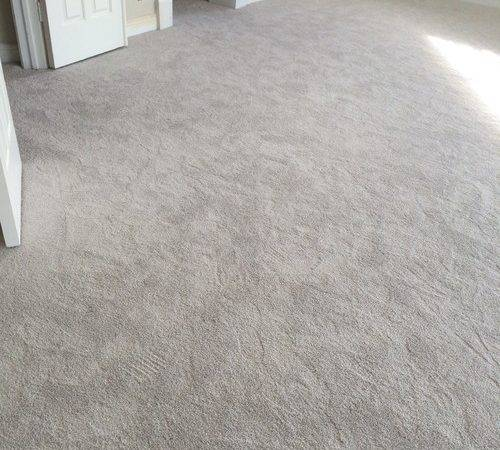Help Paint Color Gray Carpet