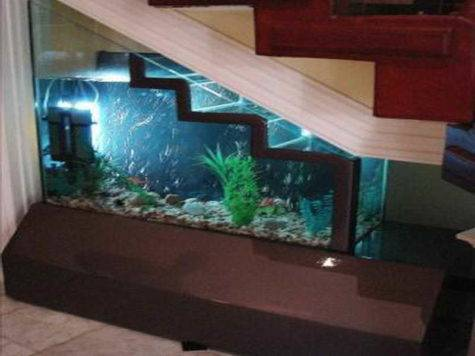 Home Accessories Aquarium Decoration Ideas Under