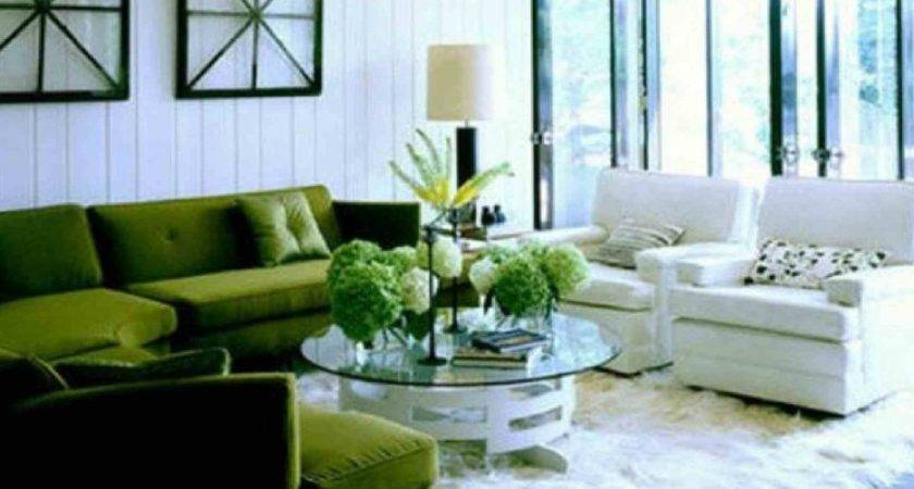 Living Room Amazing Brown Green Decorating