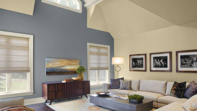 Living Room Wall Color Ideas Brown