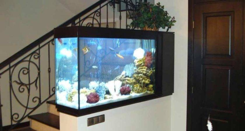 Make Wall Aquarium Fish Tank Diy