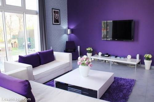 Modern Purple Living Room Photos