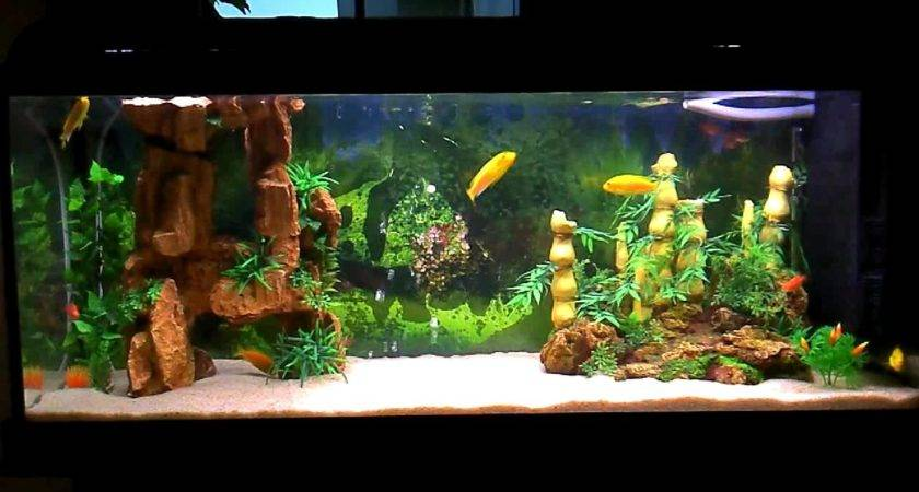 Most Beautiful Aquarium Mykonosexplorer Youtube