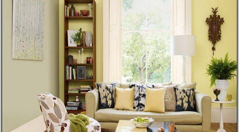 Most Popular Living Room Paint Colors Painting