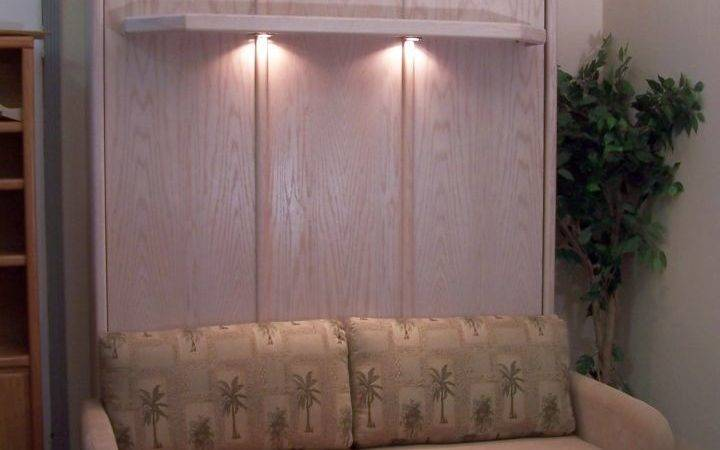 Murphy Bed Couch Ideas Rustic Cabinet