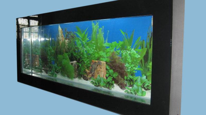 New Wall Hanging Mounted Acrylic Fish Tank Small Aquarium