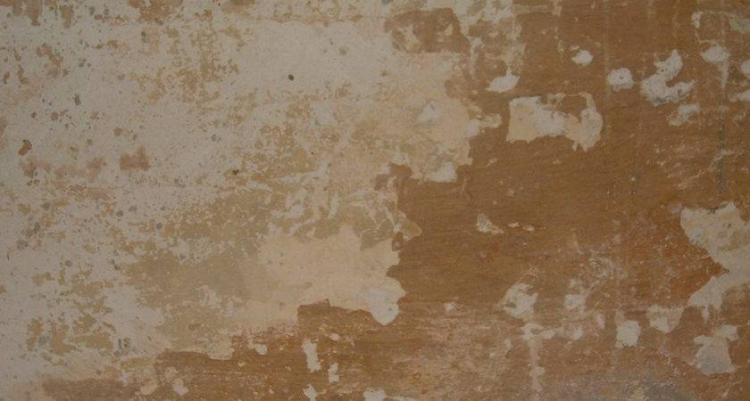 Painting Texture Examples Ideas Limewashed Wall
