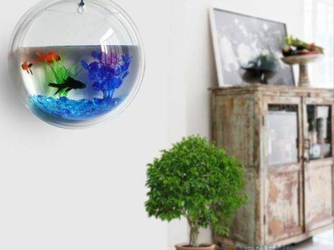 Plant Wall Hanging Bubble Aquarium Bowl Fish Tank