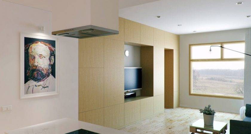 Small Kitchen Living Room Design Ideas Dgmagnets
