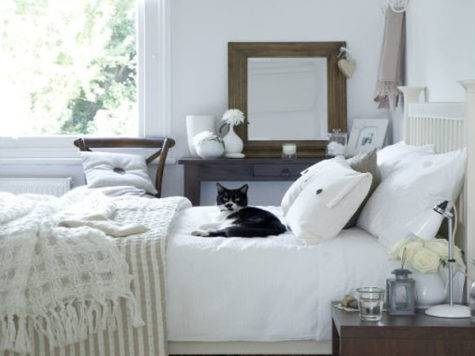 Spare Bedroom Colors Facemasre