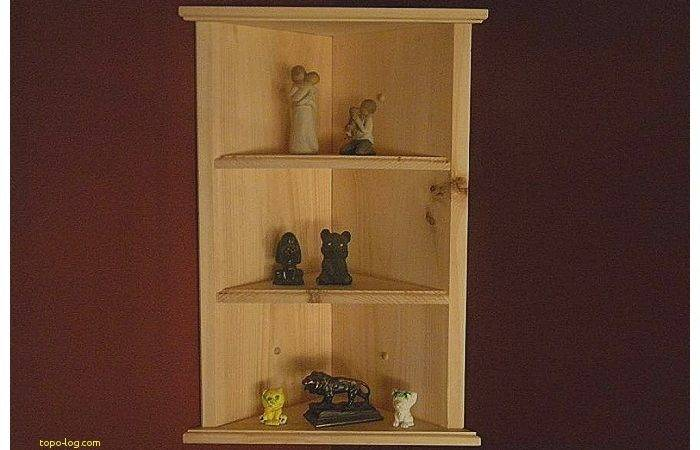Wall Mounted Corner Shelving Unit Lovely Awesome
