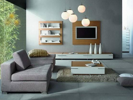Wonderful Contemporary Living Room Furniture Gray Interior
